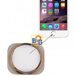 Home Button Repair Part for iPhone 6 (White)