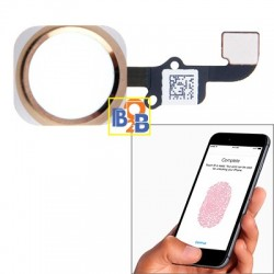 Home Button Flex Cable with Fingerprint Identification Function for iPhone 6 & 6 Plus(Gold)