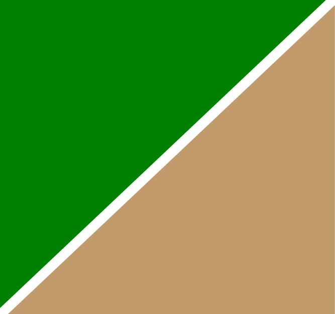 Green Camel