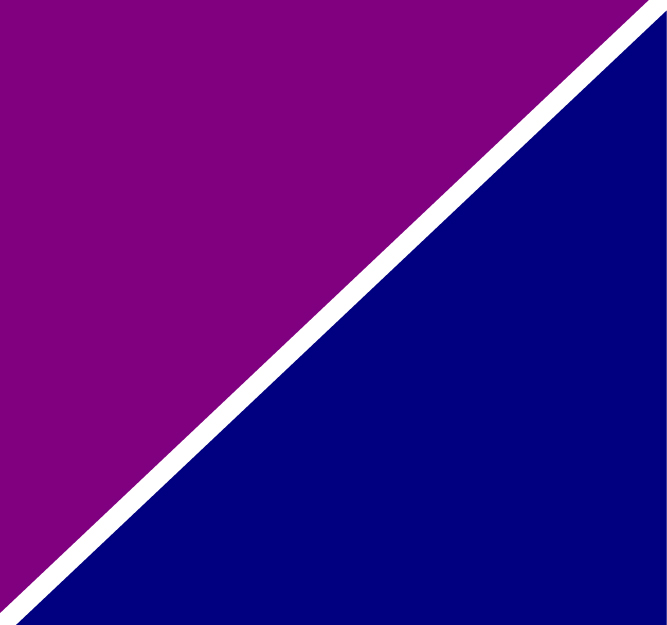 Purple Navy